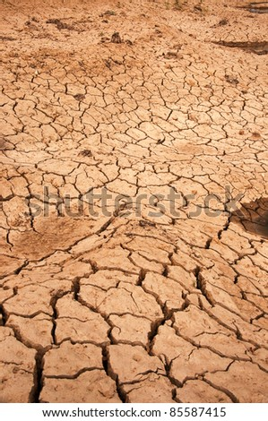 Dry land texture, background image.