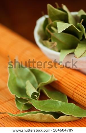 dry laurel leaves (Laurus nobilis)
