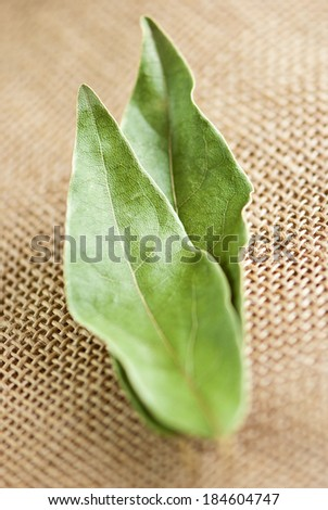 dry laurel leaves (Laurus nobilis) on jute background
