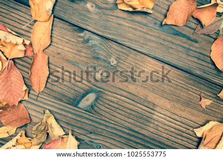 Dry leaf frame on wooden background. Autumn seasonal banner template backdrop. Yellow leaf frame on wooden table. Rustic flat lay. Dry leaf decor. Orange leaf texture. Fall season top view photo