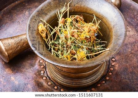 Dry medicinal hypericum.Medicinal herbs and alternative medicine