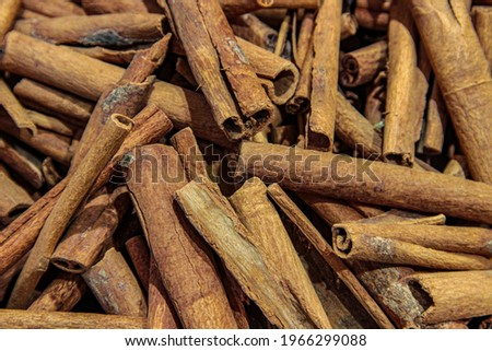 Dry organic Ceylon cinnamon sticks close-up. Cinnamon sticks are randomly scattered close-up. Cinnamon sticks are not casually in the store. Cinnamon sticks on a wooden background.