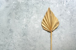 Dry palm leaf fan on gray grunge background. Top view, flat lay, copy space