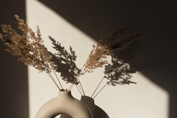 Dry pampas grass / reed in stylish vase. Shadows on the wall. Silhouette in sun light. Minimal interior decoration concept