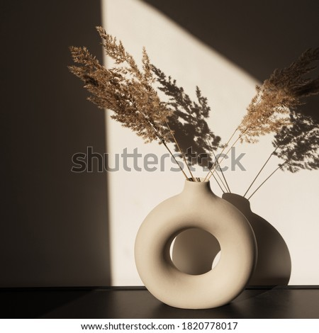 Dry pampas grass / reed in stylish vase. Shadows on the wall. Silhouette in sun light. Minimal interior decoration concept. Photo stock ©
