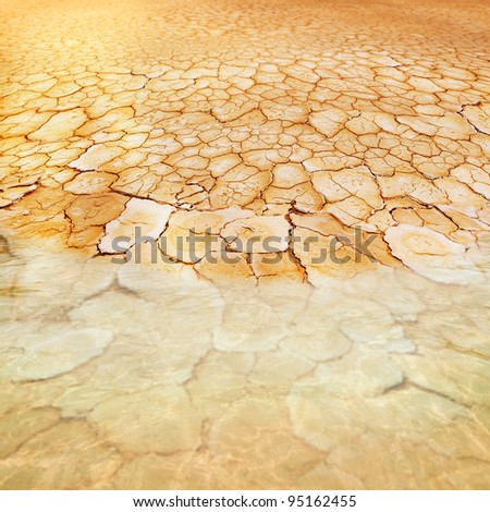 Dry, parched, cracked earth stretches from small water sources