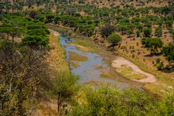 Dry river bed swamp in the landscape of the Tarangire National Park, Manyara Region, Tanzania, East Africa. Acacia bush trees with grassland during dry season.
