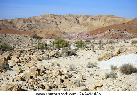 Dry riverbed and mountain near crater Ramon in Negev desert, Usrael