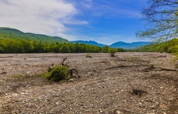 Dry riverbed in the mountains in spring