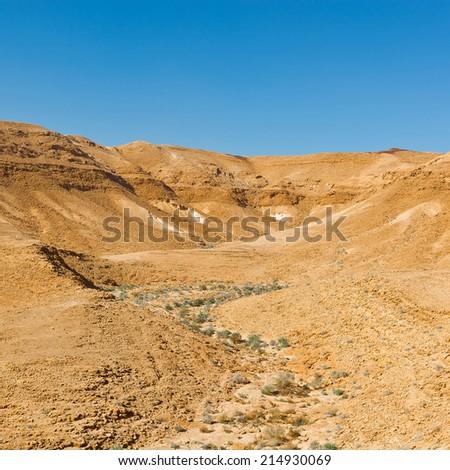 Dry Riverbed in the Negev Desert