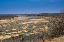 Dry Riverbed, with blue sky, during drought of 2016, Kruger National Park