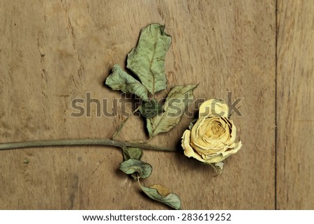 Dry rose decorated on wood for background decorations.