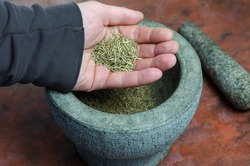 Dry rosemary in a man's hand close-up. A portion of dried spices in the palm of his hand. Graystone mortar with a pestle in the background. Grinding dried herbs and spices for further cooking.