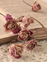 Dry roses and old book on knitted napkin