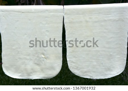 Dry rubber sheets hung from natural rubber, Krabi, Thailand, Southeast Asia, Asia