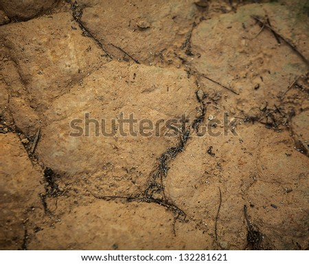 Dry sand background.