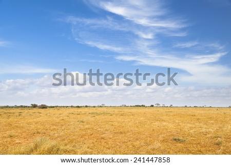 Dry savanna landscape in Tsavo East National Park in Kenya.