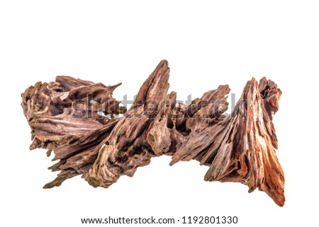 dry snag of a coniferous tree, old weathered relief wood isolated on a white background, close-up nature abstract - Shutterstock ID 1192801330