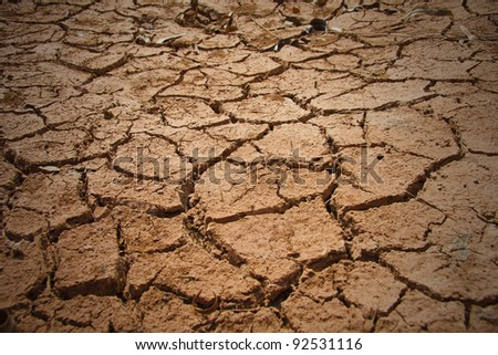Dry soil and climate.