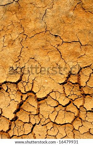 Dry soil detail