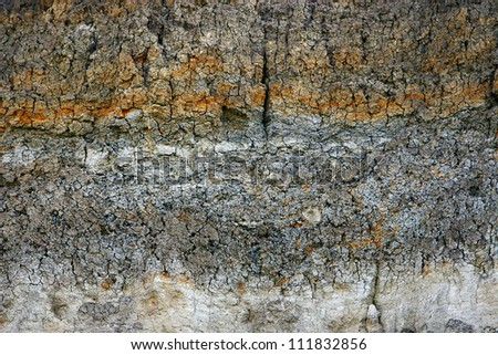 dry soil of the earth in the context of the texture