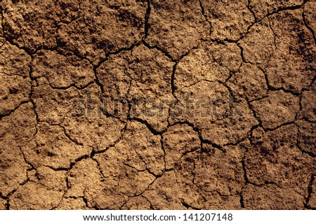 Dry soil texture on the ground