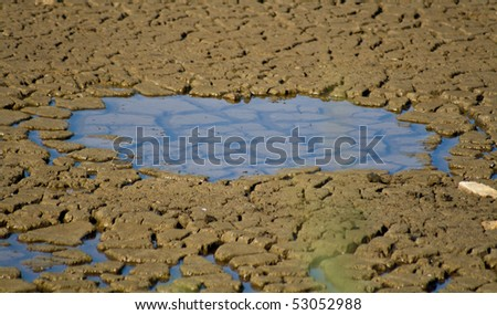 Puddle Of Water. with a puddle of water