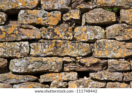 Dry stone wall covered with orange lichen