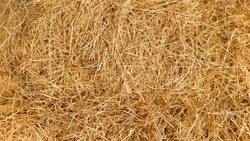 Dry straw texture background, texture of dried yellow grass stems.
