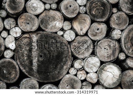 Dry timber log stacked as background. Logs cross cuts on the timber cutting.