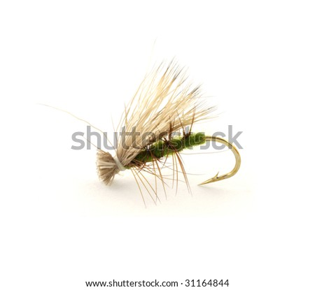 Dry trout fly