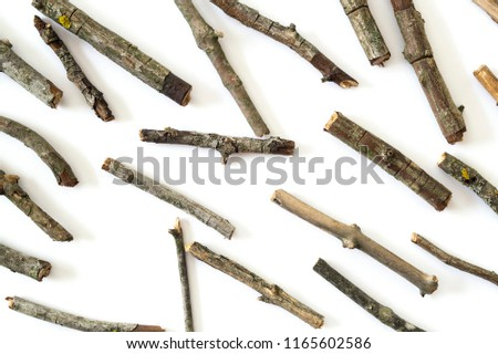 Dry twigs isolated on white background. #1165602586