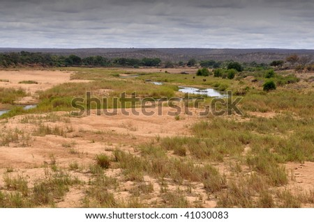 dry wash riverbed of Letaba in Kruger NP,South Africa