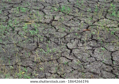 Photo of  Dry wells, pond without water,  , cracked ground without water
