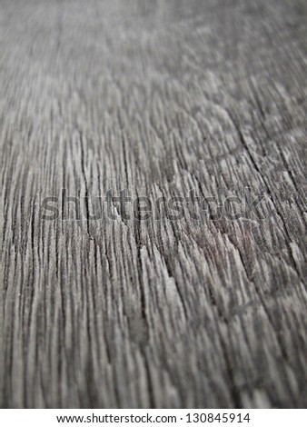 Dry wood background. #130845914