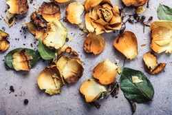 dry yellow roses on a concrete background