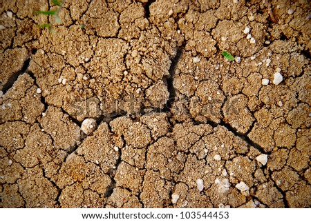 Dry yellow soil in the desert texture for background for Soil yellow color
