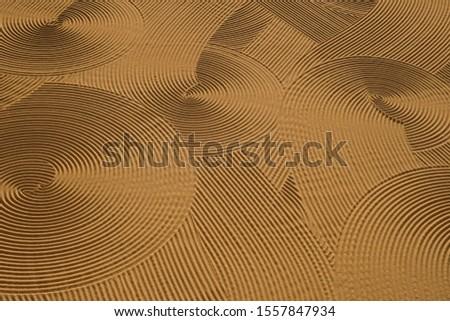 Dryed wheat under the sunlight #1557847934