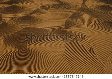 Dryed wheat under the sunlight #1557847943