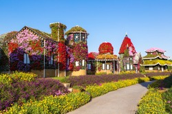 Dubai miracle garden with over 45 million flowers in a sunny day