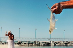 Dubai, United Arab Emirates, An old man, gray-haired, dressed in white cloth, fishing with net on public beach, close on the left hand holding a small fish