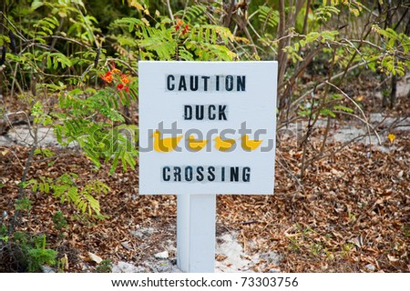 Duck crossing sign on Little Cayman