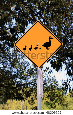 Duck Crossing Warning Road Sign - Current Australian Road Sign