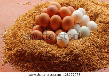 Duck eggs and chicken eggs