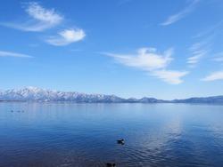 duck in Lake Inawashiro.snow covered mountain.mountain Lake with blue sky .fukushima.Tohoku.Japan