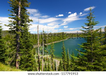 Duck Lake in Yellowstone National Park of Wyoming