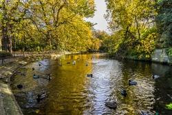 Ducks enjoying a bright autumn day in St Stephen's Green Park, Dublin, Ireland