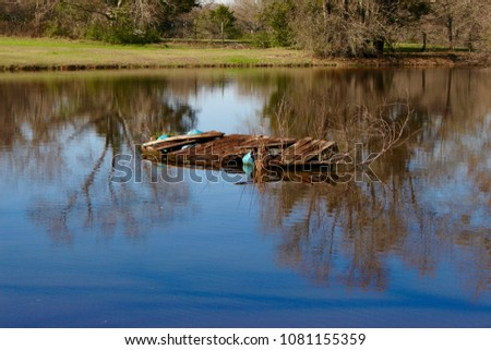 Ducks on a pond and a pond itself #1081155359