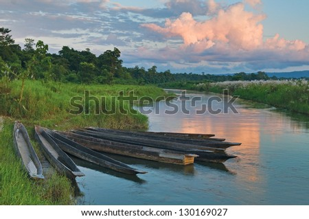 Dugout boats on the river bank in Chitvan's national park in Nepal.