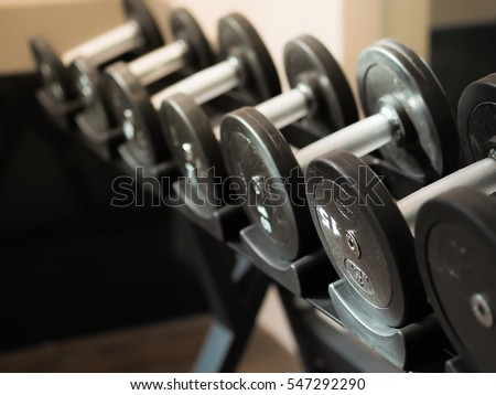 dumbbells in gym  many dumbells in sport fitness center #547292290